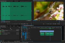 adobe premiere pro portable 32 bit free download